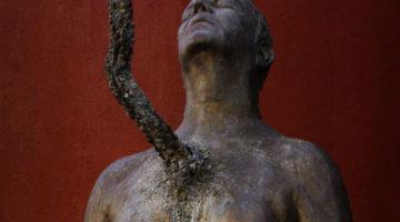 Transmutações - Exposição de Marco Paulo Rolla